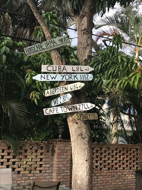 decorative signage on a courtyard tree